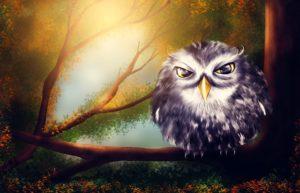 Dětské básničky: Spi, andílku (z rubrik Říkanky pro nejmenší, Básničky na dobrou noc, Zhudebněné básničky)