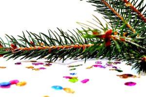 Dětské básničky: Smrková větvička (z rubrik Vánoční básničky, Básničky o zimě)