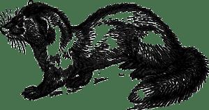 Dětské básničky: Volá kuna na tchoře (z rubrik Krátké básničky, Básničky o zvířátkách)